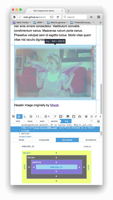 A screenshot of the firefox devtools with an image element highlighted in the dom, showing its dimensions as 440 by 293 pixels.